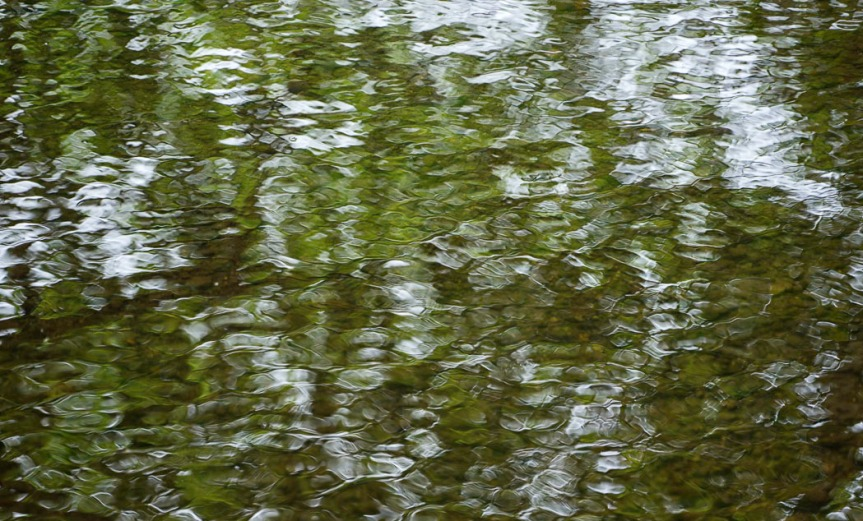 green rippled water surface