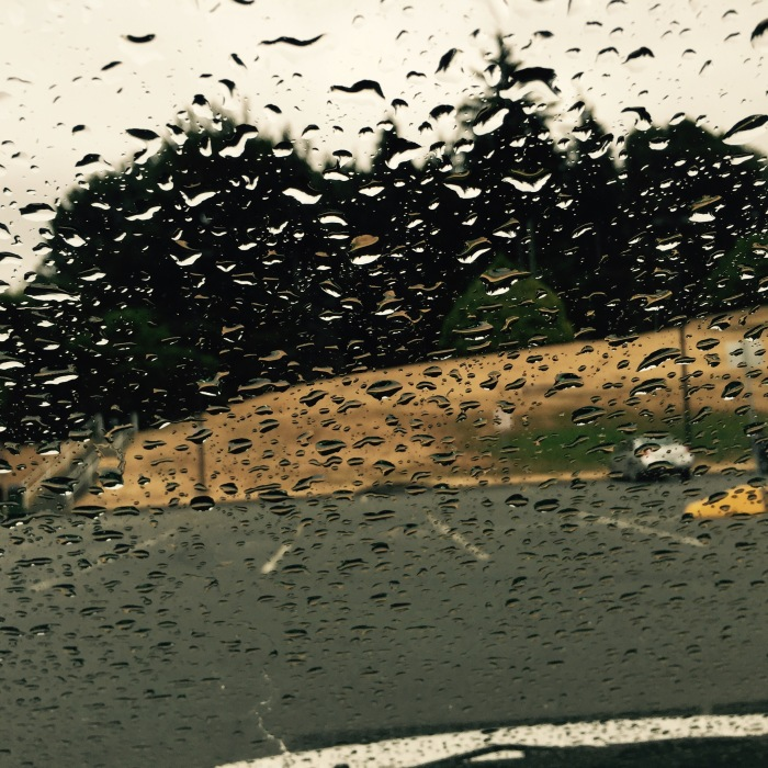 rain on car windshield with dried grass and trees in distance